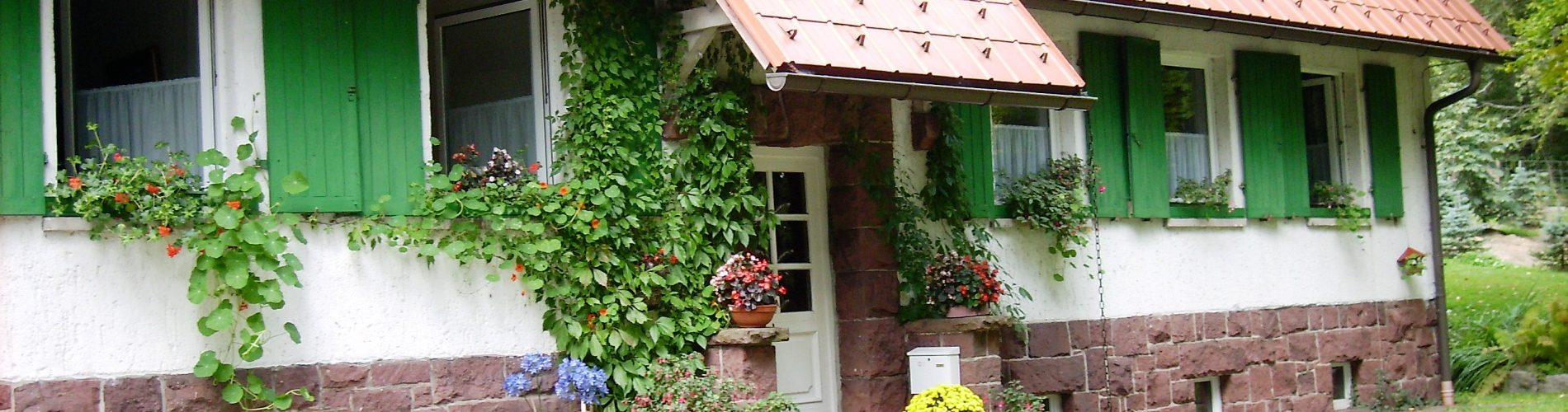 Ferienhaus auf dem Rennsteig Kleiner Inselberg Grenzwiese